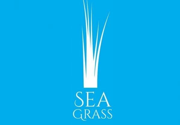 Quarto launches new Children's imprint Seagrass Press